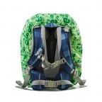 Ergobag Regencape Grün, Farbe: grün/oliv, Marke: Ergobag, EAN: 4260217196460, Abmessungen in cm: 24.0x31.0x5.0, Bild 2 von 2